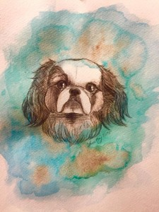 Pet Portraits by Lisa Kay