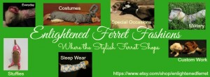 Enlightened Ferret Fashions
